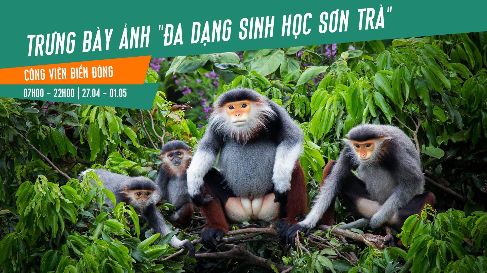 Chi tiết chương trình Khai trương mùa Du lịch biển Đà Nẵng 2018 2