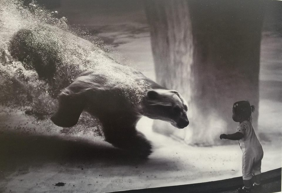"""Triển lãm ảnh """"Cuộc thi ảnh Nghệ thuật Quốc tế lần thứ IX tại Việt Nam năm 2018"""" 3"""