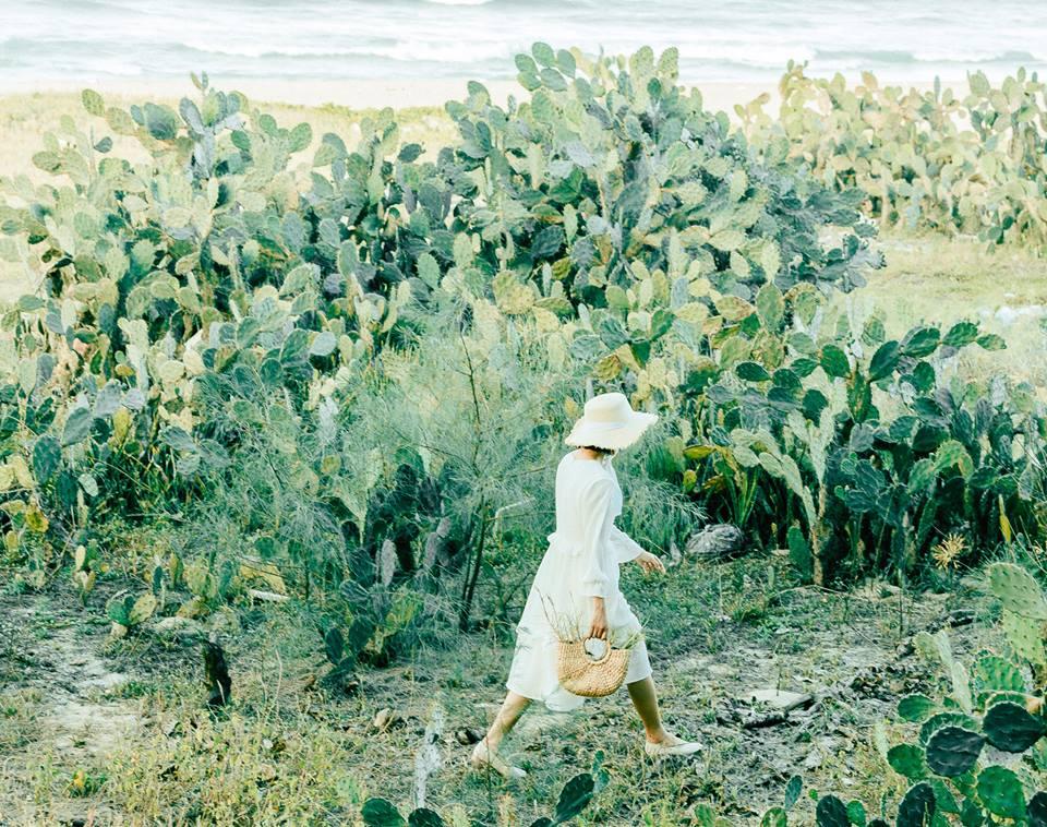 Dò tìm tọa độ BÙA YÊU ở cánh đồng xương rồng gần Đà Nẵng và Hội An 1