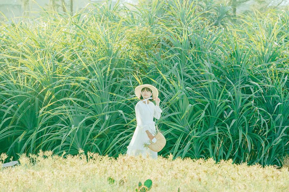 Dò tìm tọa độ BÙA YÊU ở cánh đồng xương rồng gần Đà Nẵng và Hội An 3
