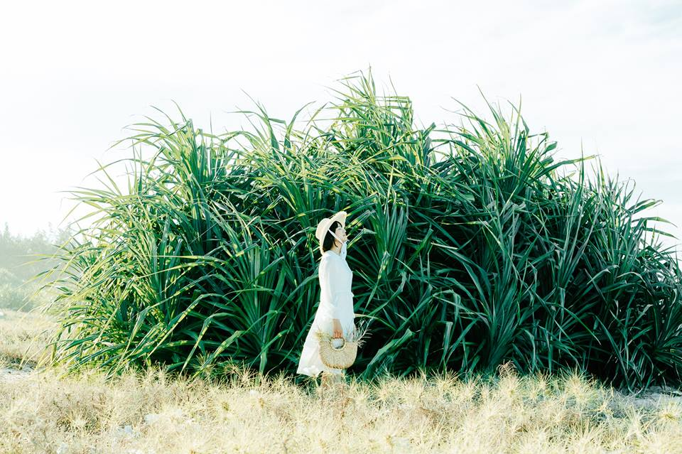 Dò tìm tọa độ BÙA YÊU ở cánh đồng xương rồng gần Đà Nẵng và Hội An 7