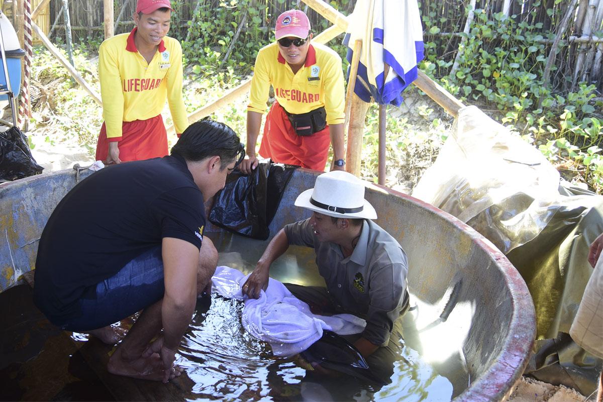 FURAMA Resort DANANG nhận nuôi cá heo bị lâm nạng