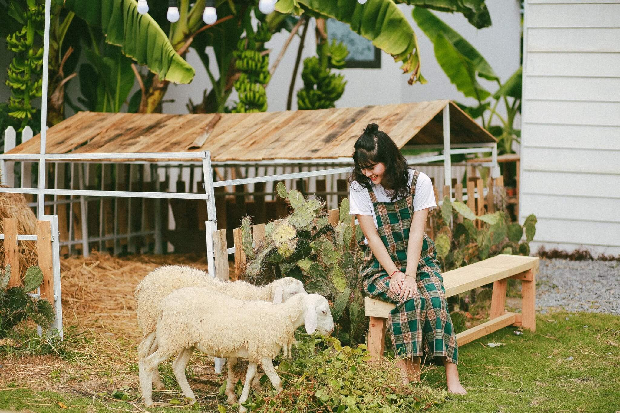 Dream House Phim Truong Moi Toanh Tai Da Nang Fantasticity Com 03