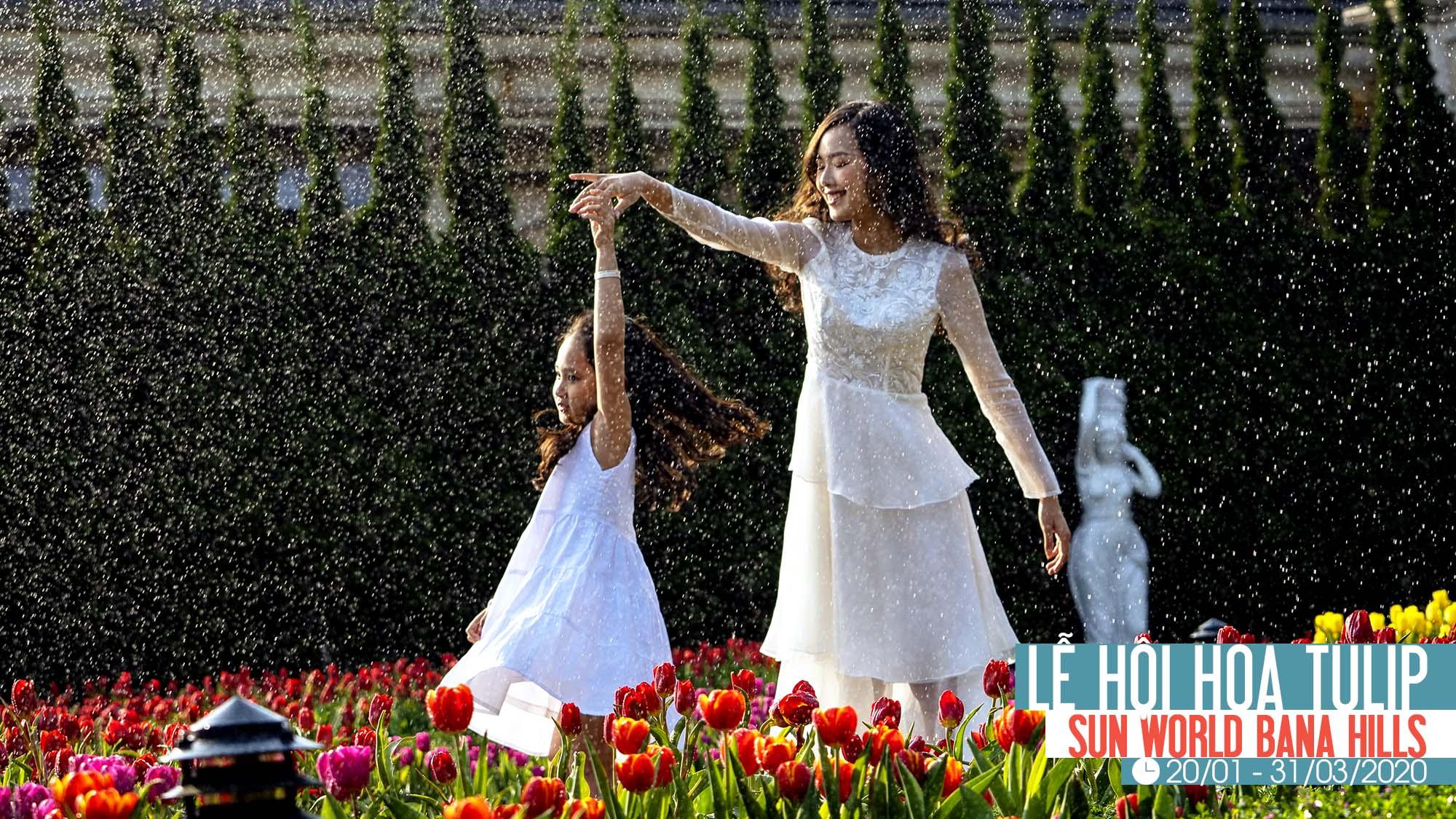 Le Hoi Hoa Tulip 2020