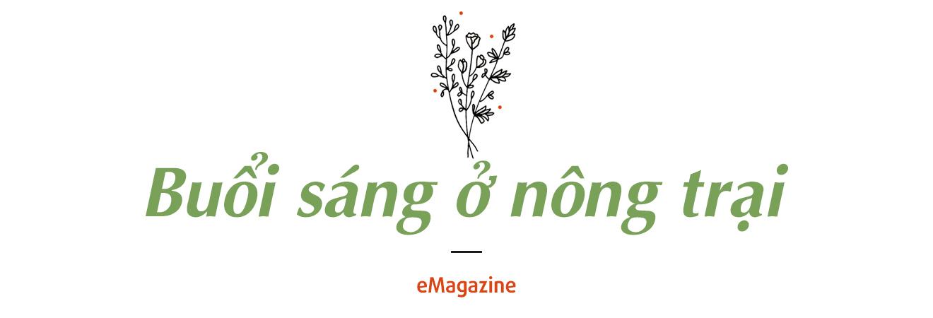Co Mot Binh Yen Goi La An Nhien 29